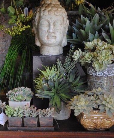 Posh Shoppe Florist: Succulente