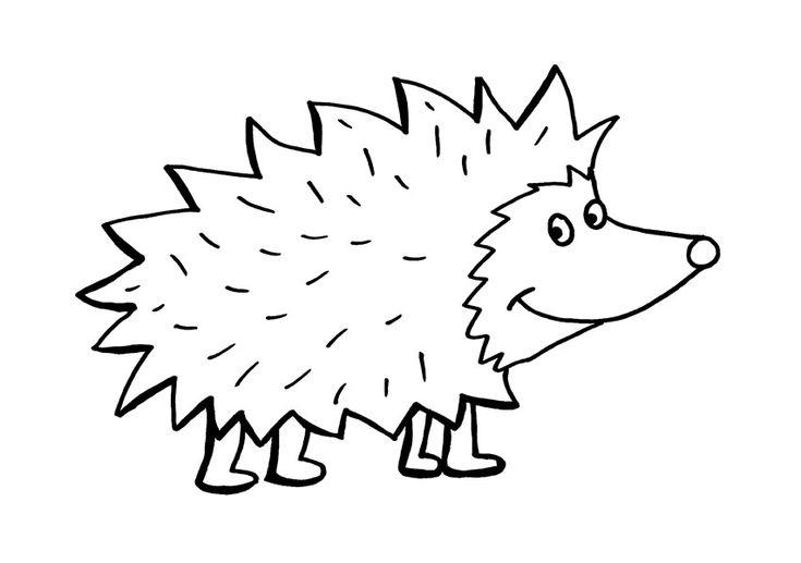 Ausmalbild Igel: Igel kostenlos ausdrucken