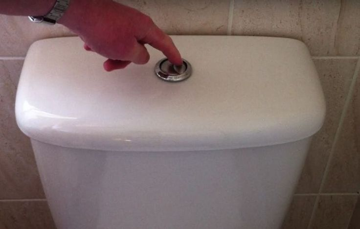 This is why you should flush the toilet as soon as you get home from your holiday!