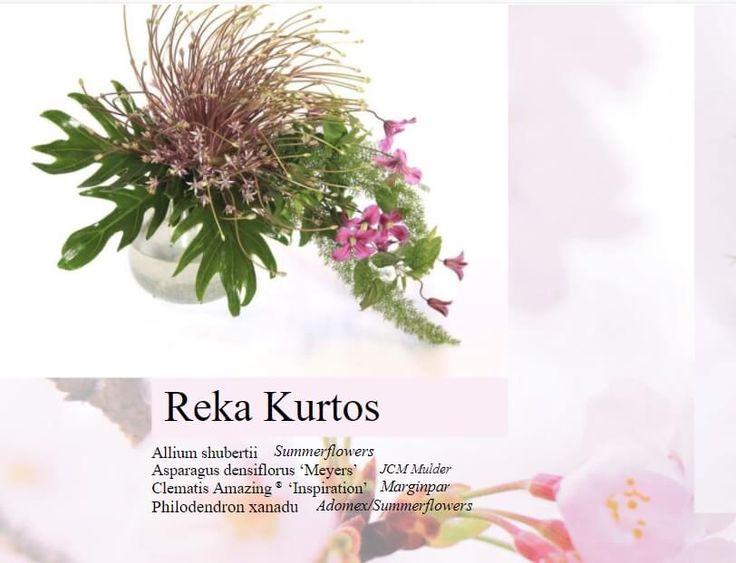 Megjelent a Floral Fundamentals magazin legújabb száma: Kürtös Réka Dublinban élő mester virágkötő alkotásai is megcsodálhatók az ingyenes magazinban https://viragutazo.hu/floral-fundamentals-magazin/