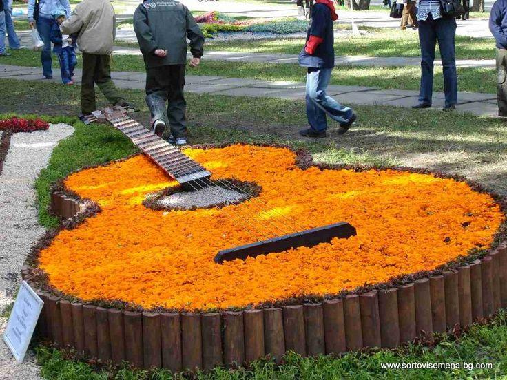 китара музикална градина