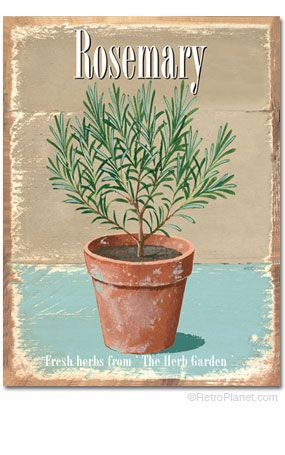 Rosemary Fresh Herbs Tin Sign