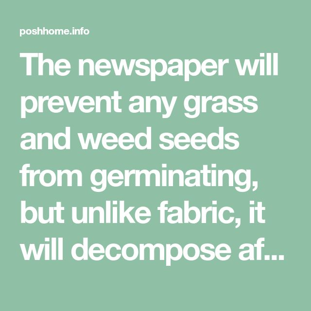The newspaper will prevent any grass and weed seeds from germinating, but unlike fabric, it will decompose after about 18 months. By that time, any grass and weed seeds that were present in the soil on planting will be dead. It's green, it's cheaper than fabric, and when you decide to remove or redesign the bed later on, you will not have the headache you would with fabric. - poshhome.info