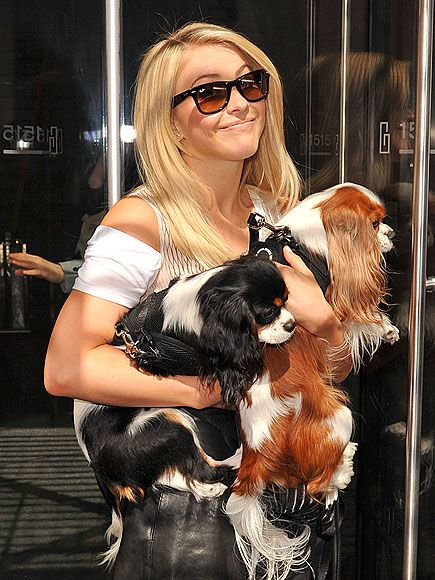 JULIANNE HOUGH photo | Julianne Hough with Lexi, ( Blenheim ) and Harley, (Tri Color.)