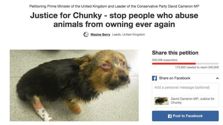 Justice for Chunky: Thousands sign petition. Please join us. Too many animals have suffered and died horrible deaths at the hands of these sadistic monsters.