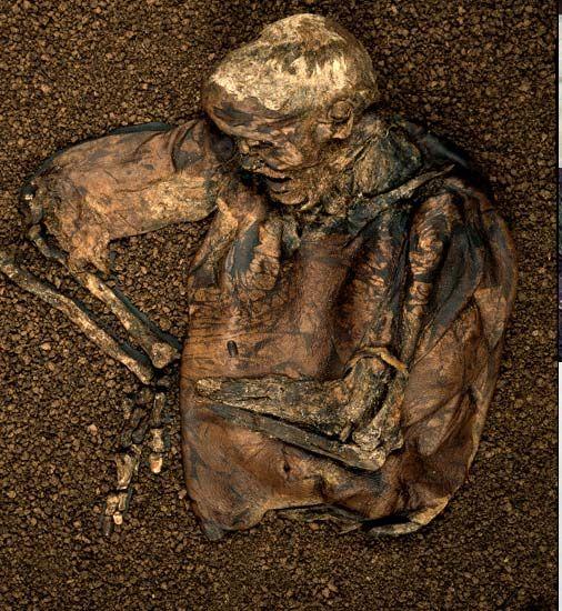 Lindow Man 100 B.C.-A.D. 100 Found near Manchester, England in 1984
