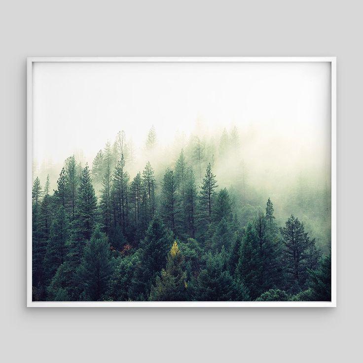 Minimal Green Forest