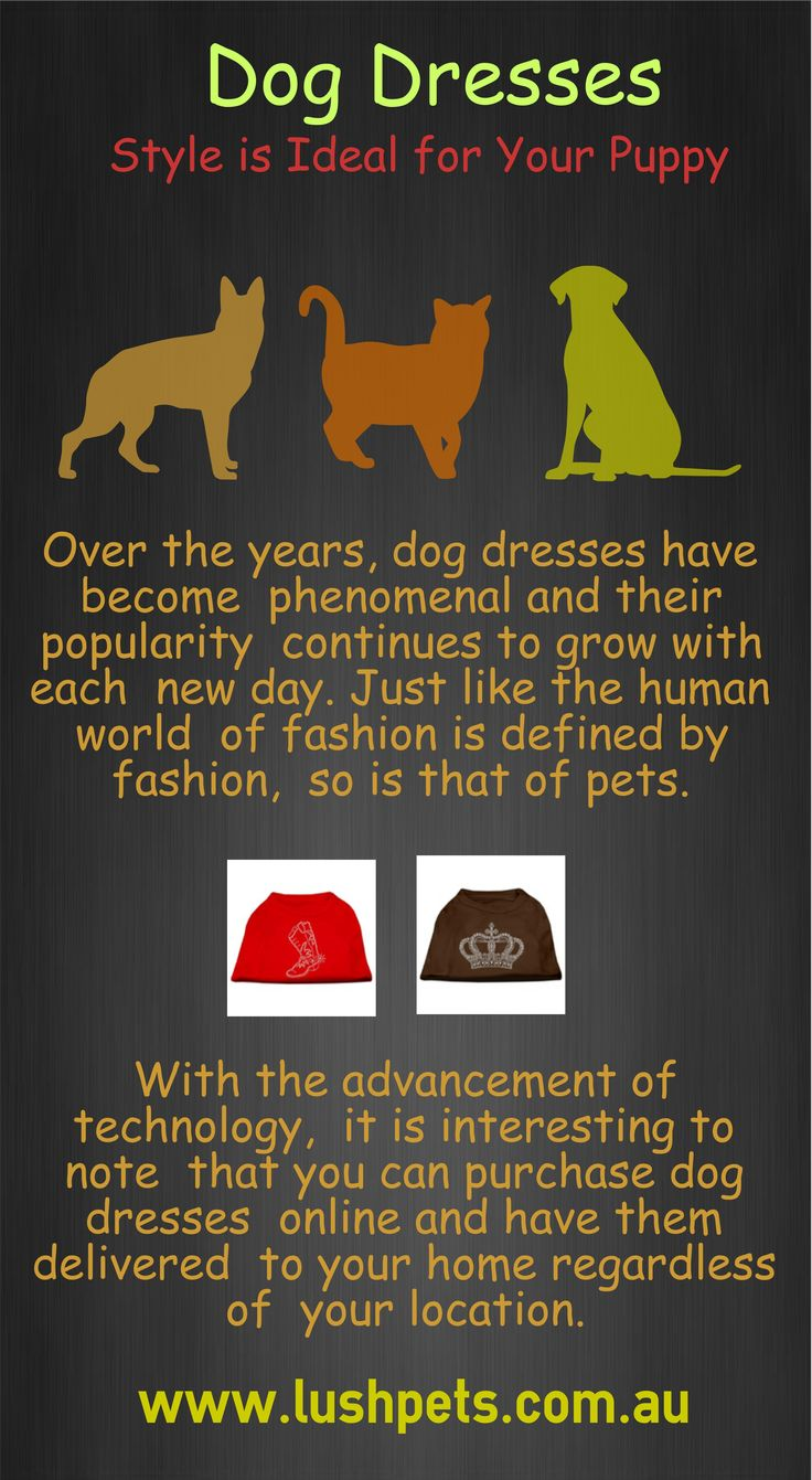Over the years, #dogdresses have become phenomenal and their popularity continues to grow with each new day. Just like the human world of fashion is defined by fashion, so is that of pets.