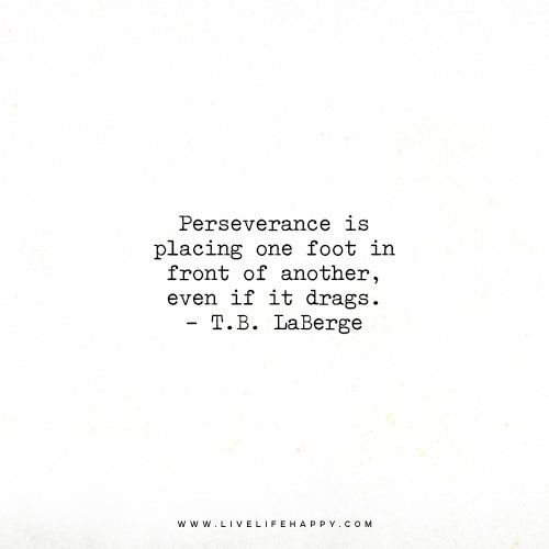 Perseverance Is Placing One Foot