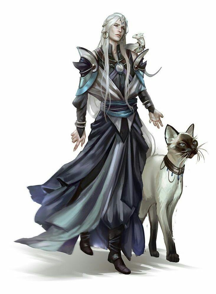 Summoner Wizard - Pathfinder PFRPG DND D&D d20 fantasy