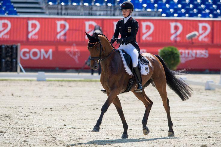 """Aufregung im deutschen Vielseitigkeitsteam: Julia Krajewskis Pferd Samourai du Thot wurde positive auf eine """"controlled medication substance"""" getestet. Aberkennung der EM-Team-Silbermedaille ist möglich. #eventing #horse #equestrian #EQWOnet"""