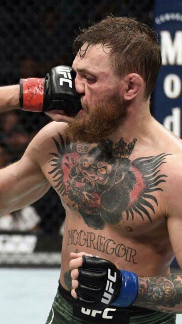 Conor Mcgregor Gets Punched By Khabib Nurmagomedov During Ufc 229 Conor Mcgregor Ufc My Dream