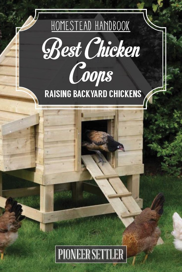 Check out Chicken Coops [Chapter 3] Raising Backyard Chickens | Homestead Handbook at http://pioneersettler.com/chicken-coops-raising-backyard-chickens/