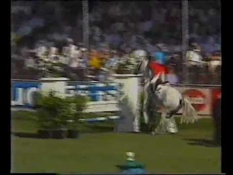 John Whitaker & Milton - 1989 European Champions - YouTube
