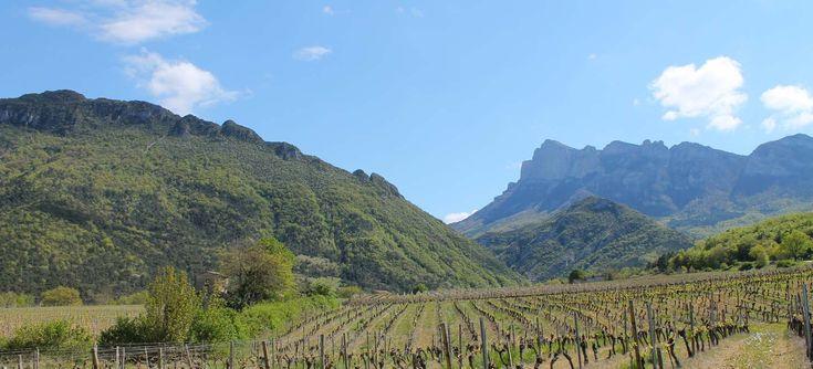 Saillans / Vallée de la Roanne / Découvrir Saillans et la Vallée de la Roanne/Vallée de la Drôme