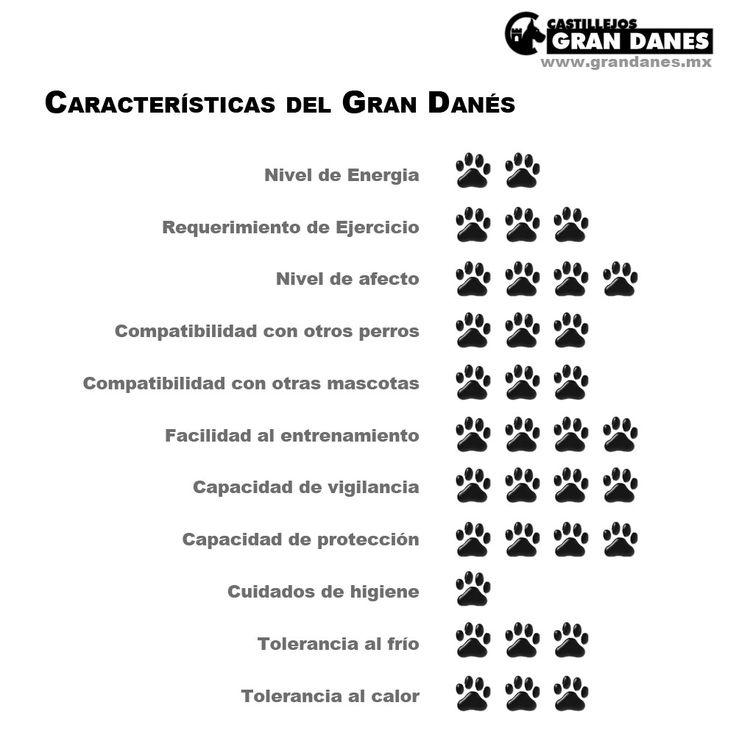 Caractetristicas del Gran Danes