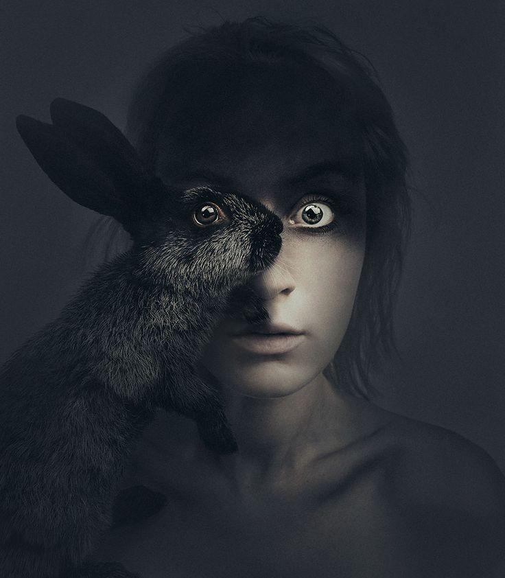 Les portraits d'une photographe qui partage un œil avec ses animaux