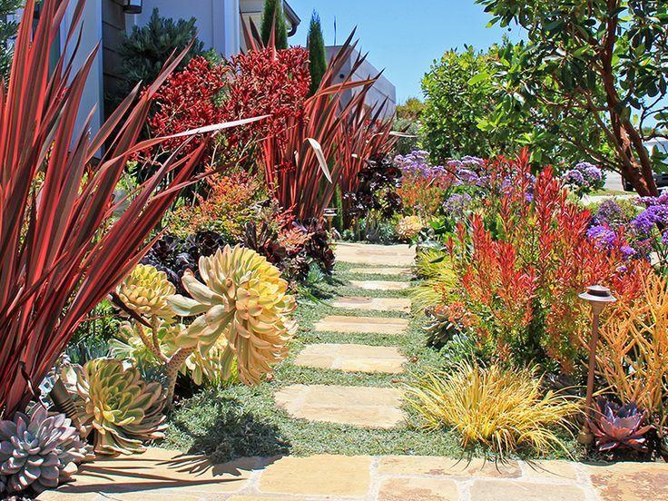 17 Best Images About Plant Combos On Pinterest