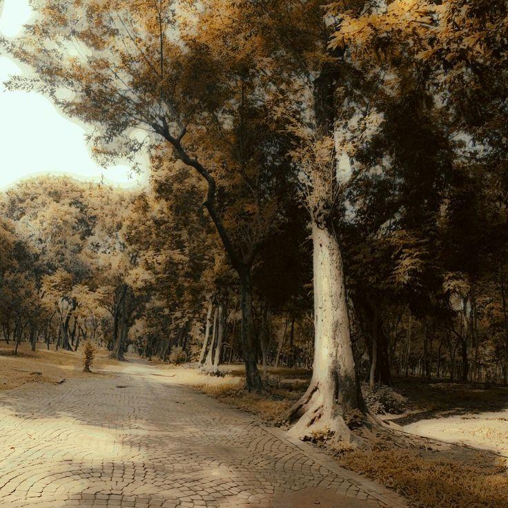 Monas Park, Jakarta