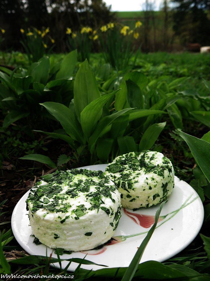 Krémový čerstvý sýr s medvědím česnekem – Domácí mlékař