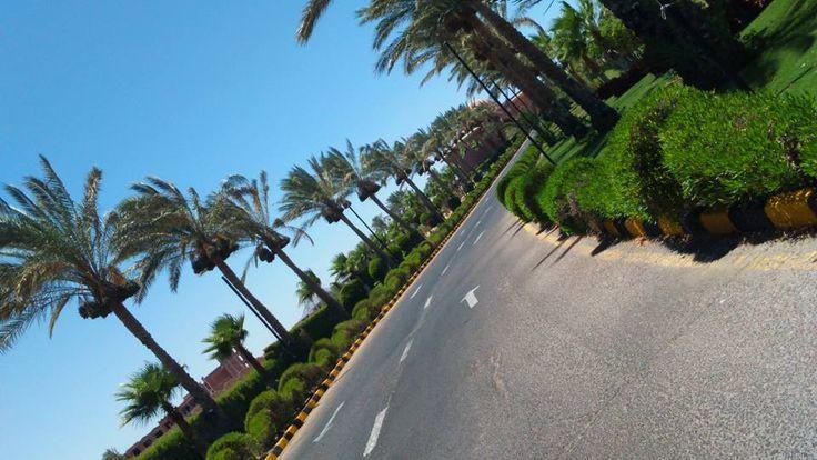 Sharm El Sheikh | شرم الشيخ in جنوب سيناء