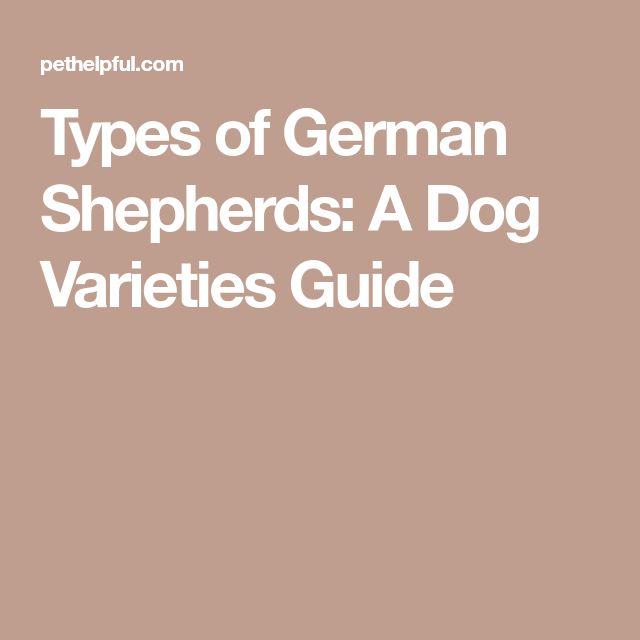 Types of German Shepherds: A Dog Varieties Guide