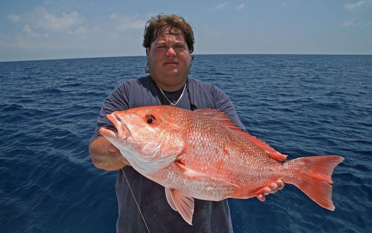 Red snapper fishing in gulf states outdoor channel for Red snapper fishing