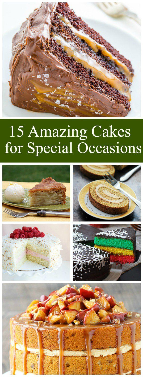 15 Amazing Cake Recipes to Bake for Special Occasions:  Apple Pie Cake, Chocolate Salted Caramel Cake, Coconut Cake, Chocolate- Kahula Cake, Chocolate Peanut Butter Cup Cake, Tiramisu Cake Roll and more!