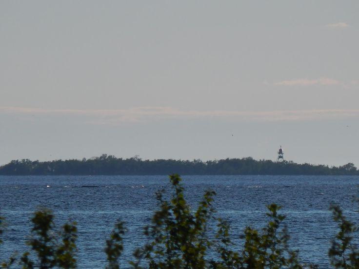Svedja, Jakobstad 2015