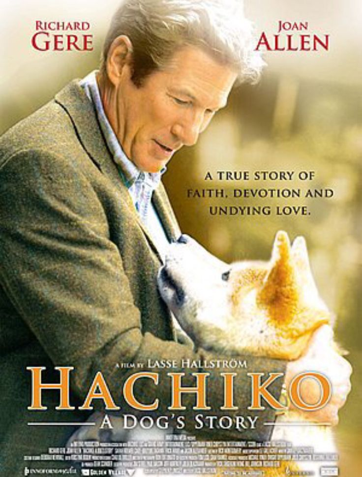 """If u loved """"Marley and Me"""" then this is a must see!  Base on a true dog story."""