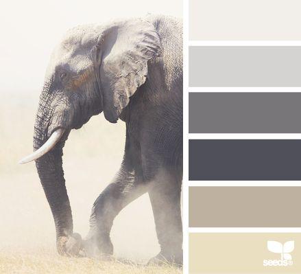 elephant tones