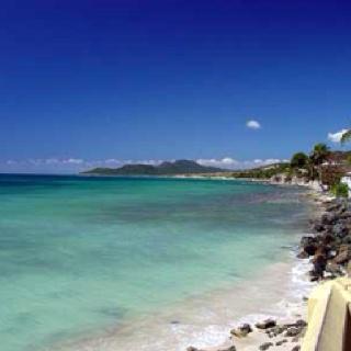 biobay in Puerto Rico