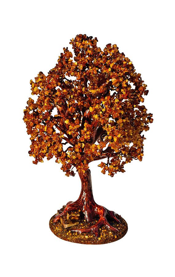 Amber tree wealth riches tree money tree amber tree by shopUNC