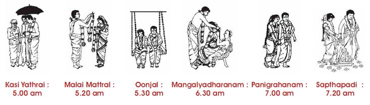 timeline of south indian wedding events with line drawing