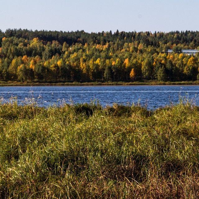 Kemijoki, Autumn in Rovaniemi. Photo: Essi Markoff