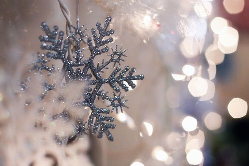 winter glitter photography by cool chic style fashion