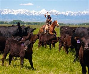 montana ranches. I could live this life and I will someday hopefully