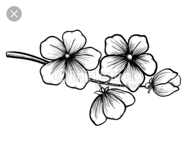 Epingle Par Karina Bendzus Sur Petits Dessins Dessin De Fleur Fleur De Cerisier Dessin Comment Dessiner Une Fleur