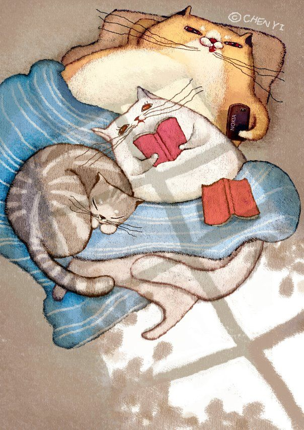 And the cats … they also read ( Chen-Yi Lin)