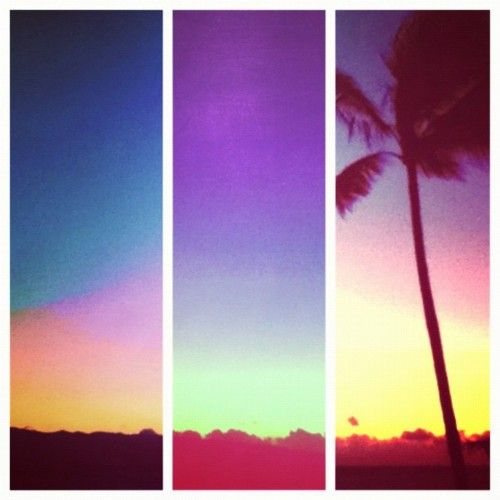 : And Or Inspiration, Beaches Holidays, Triptych Palms, Summer Colour, Palms Trees, Summer Color, Summer Pics, Andor Inspiration, Summer Time
