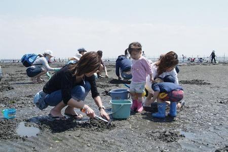 ふなばし三番瀬海浜公園 潮干狩り おすすめスポット