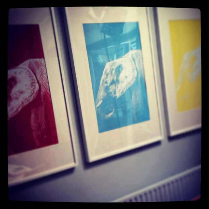 Graphic Elephant print series. Available to buy.