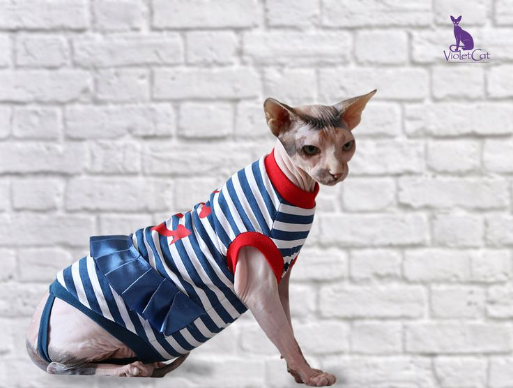 Sphynx cat clothing. Sailor Girl. T-shirt for by VioletCatpets