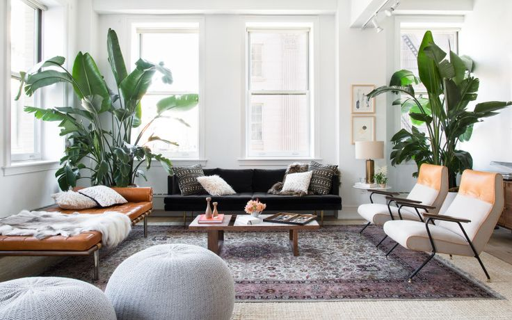 How to choose the perfect plant for your interiors - Vogue Living