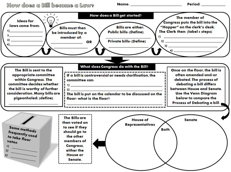 2 page graphic organizer plus student extension activity