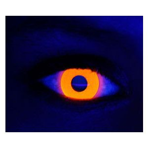 rave orange contact lenses! Brooke-for your next Gator game!