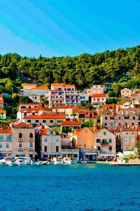 Drink way too much wine in Hvar. | 13 Glorious Reasons To Visit Croatia's Dalmatian Coast. *** This looks so much like The Carenage, St George, Grenada ***
