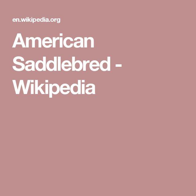 American Saddlebred - Wikipedia