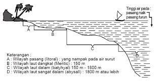 Tanah antara tanda air surut dan air pasang tandai. Lihat juga pesisir.