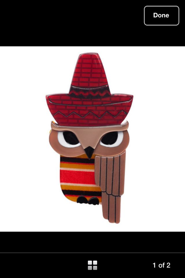 Mexican owl